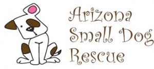 AZ small dog rescue
