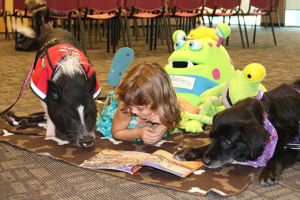 girl reading books with pigs