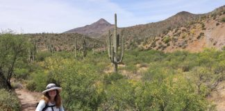 A Smiling Woman Hikes in Spur Cross Ranch Conservation Area, Arizona