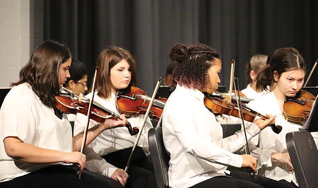 North Valley Symphony Orchestra invites young strings players